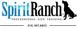 Spirit Ranch Professional Dog Training, Inc.